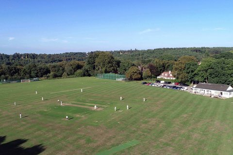Roadmap and Guidance for Return of Cricket